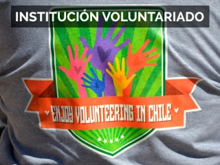 Institución Voluntariado