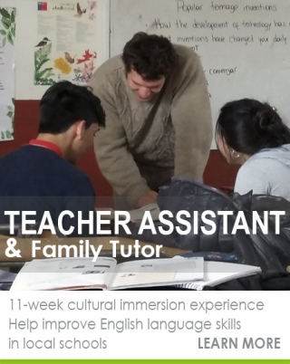 School Teaching Assistant
